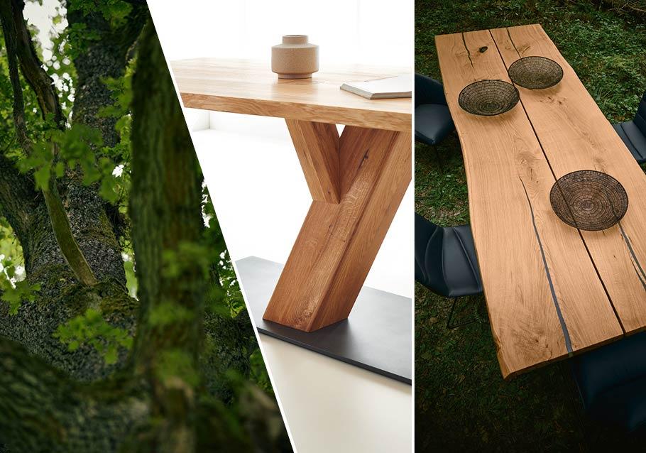 Wimmer Wohnkollektionen: Designmöbel von der Natur inspiriert