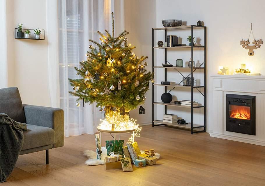 Wimmer Wohnkollektionen: Weihnachtsbaum im Topf
