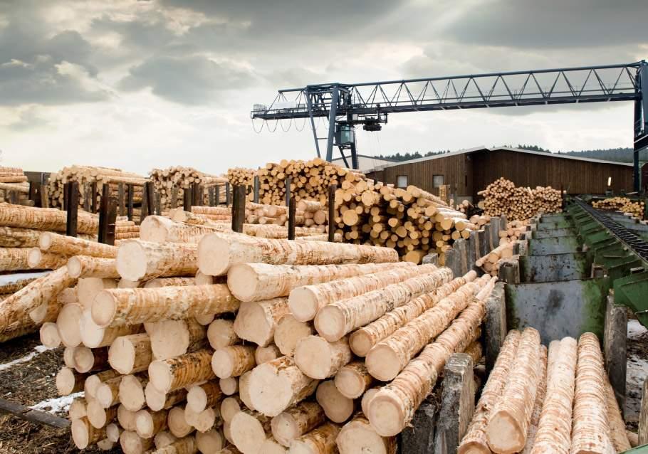 Wimmer Wohnkollektionen - Holz aus bestandsgepflegten Forsten