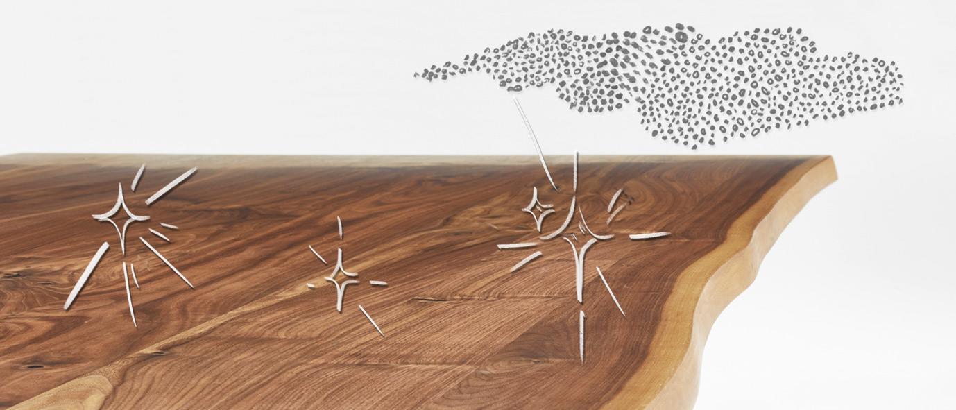 Wimmer Wohnkollektonen: Massivholz ist antistatisch