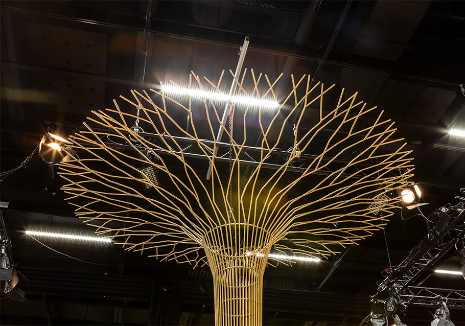 Die beeindruckende Krone unseres LINJA-Baums.