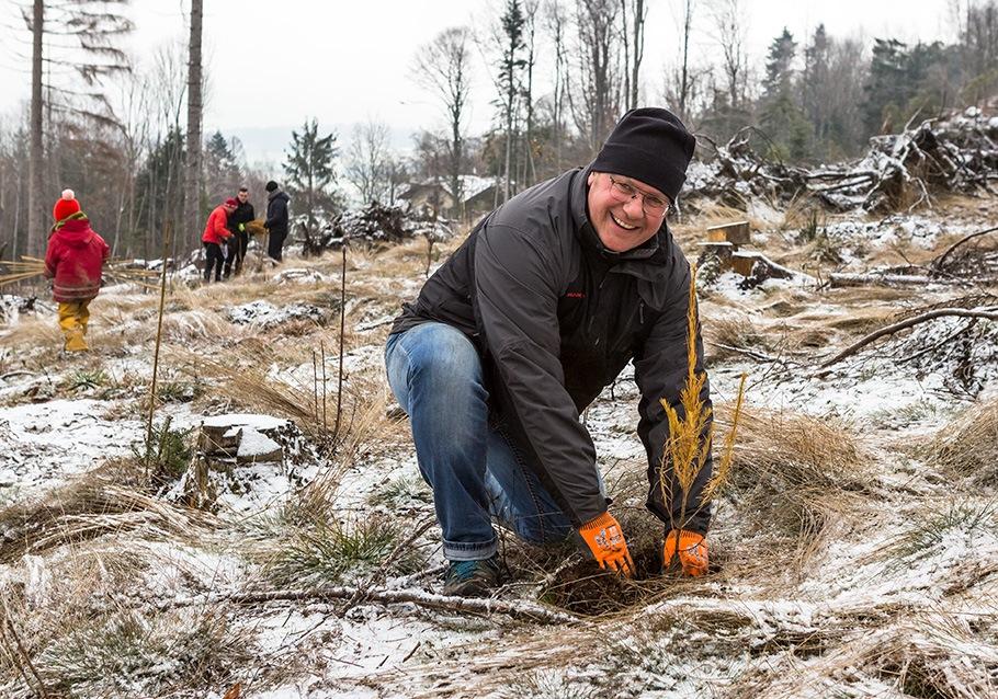 Wurzelgeber-Pflanzaktion: Gerhard Wimmer pflanzt einen kleinen Baum.